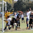 2013-11-09 SCDSL BU14 Tier 3 North Kern County Soccer Park Field 2, 10:35am kickoff Preview